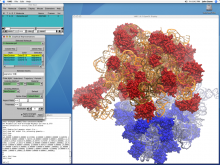 screenshot of the VMD software displaying a visualization
